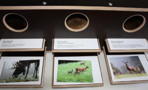 Klebefolien bedruckt mit Text und Bild