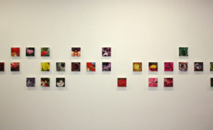 fine art print galerie individuelles format